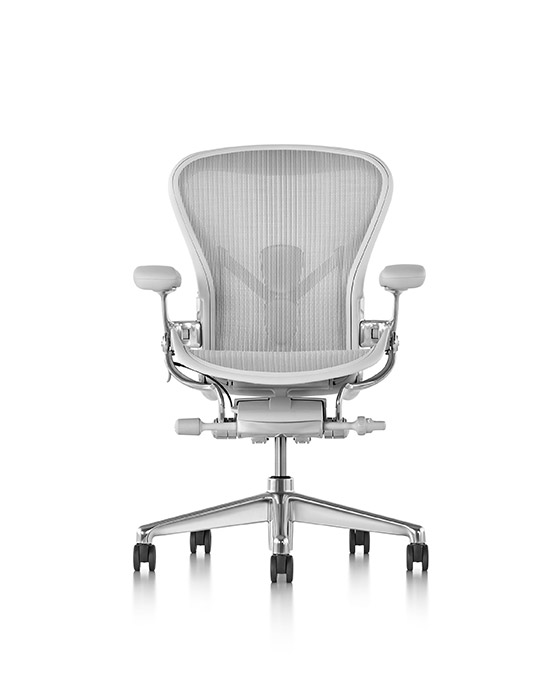 Aeron chair with PostureFit in light grey mesh.